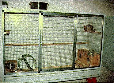 DIY Chinchilla Cages ~ Office Filing Cabinet ~ Cheap Chinchilla Cage!!