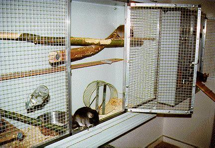 DIY-Chinchilla-Cage-6