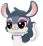 chinchilla-shopping-list