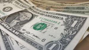 Chinchilla Prices: How Much Do Chinchillas Cost?