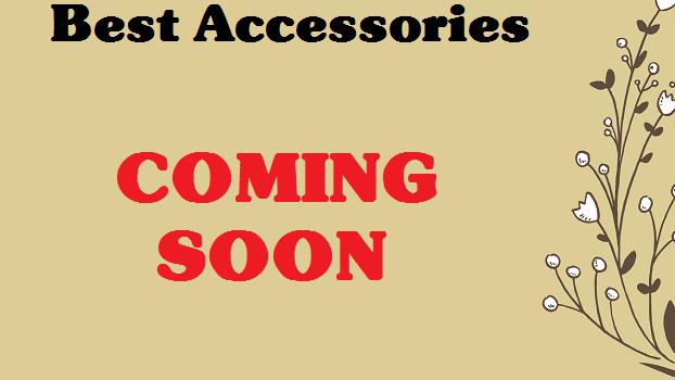 Best0Chinichilla-Accessories-soon