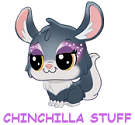 Chinchilla-As-A-Pet