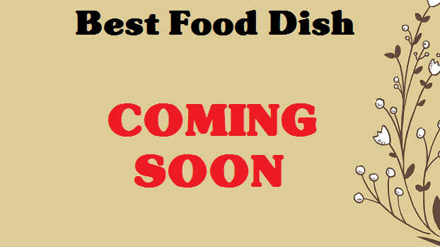 best-chinchilla-food-dish