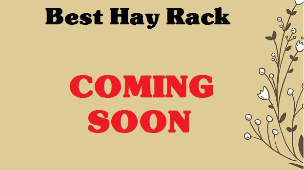 best-chinchilla-hay-rack