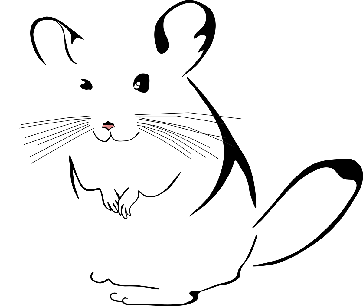 chinchilla-stuff-logo-large