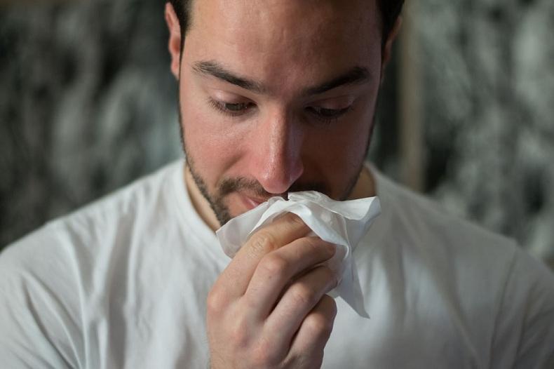 Are Chinchillas Hypoallergenic?